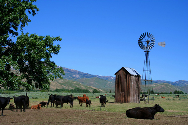 Colorado-Farm-&-Ranch-Insurance